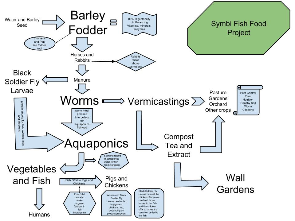 Flow chart for the fish food project symbi biological for How to feed fish